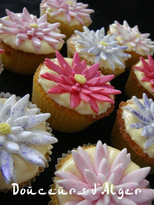 cupcake waterlily