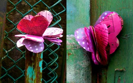 2013-03-03 Papillon11