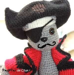 pirate12-pasapasdechat