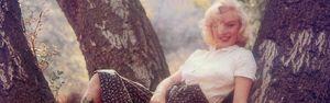 banner_mm_2012_spring_1