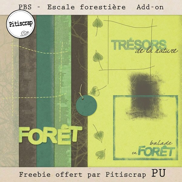 PBS-escale forestière-Pitiscrap Add on- preview