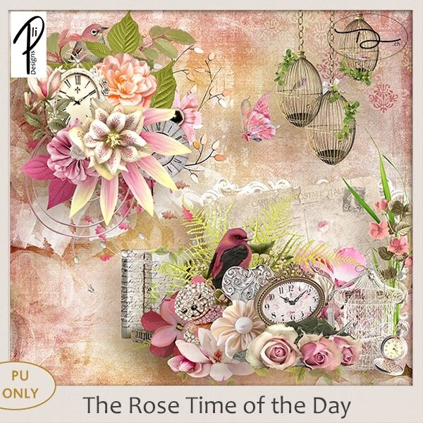 PliDesigns_TheRoseTimeoftheDay_PVDch