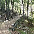Chemin de l'Estrop (bas)