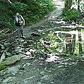 Entre ruisseaux du moulin et rolland – loire-sur-rhône 69700