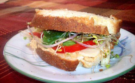 sandwich_pain_frais_1