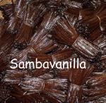 sambavanilla