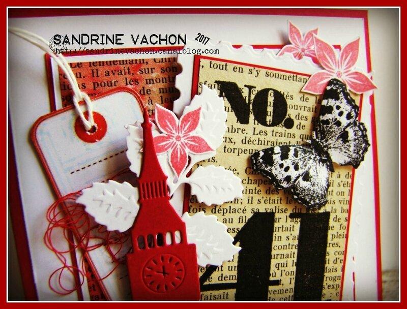 Sandrine VACHON défi 491 (2)