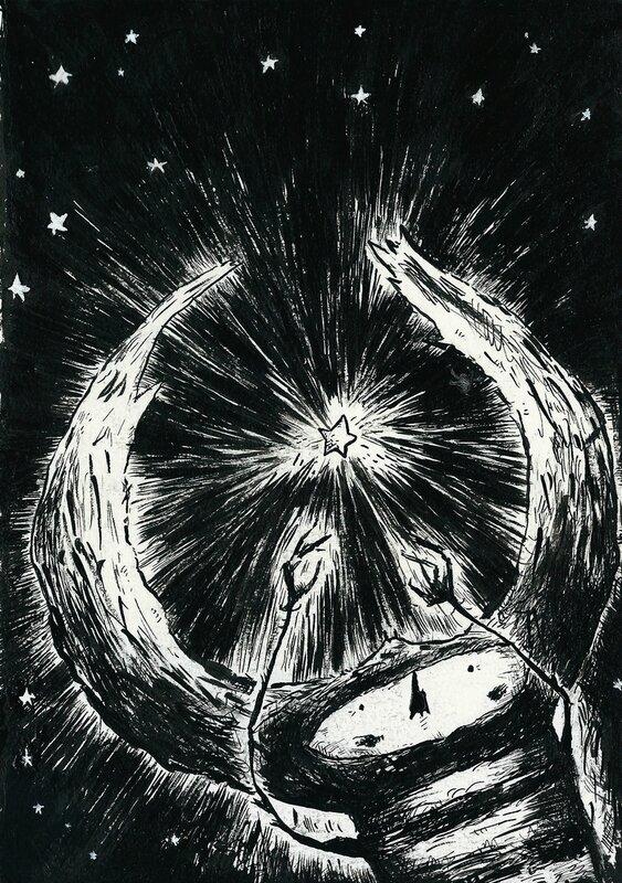 Coléoptère #1