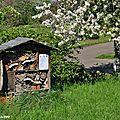 Installer une maison des insectes pour les attirer au jardin