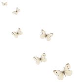 papillons clairs