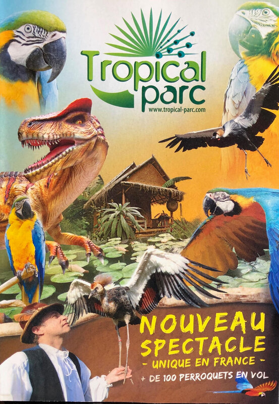tropical entête