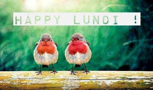 HappyLundi 1