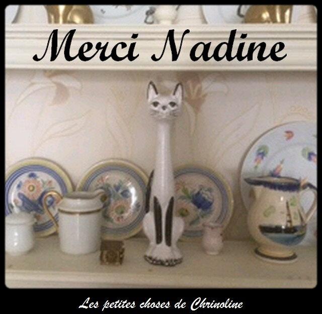 Joli chat de Nadine