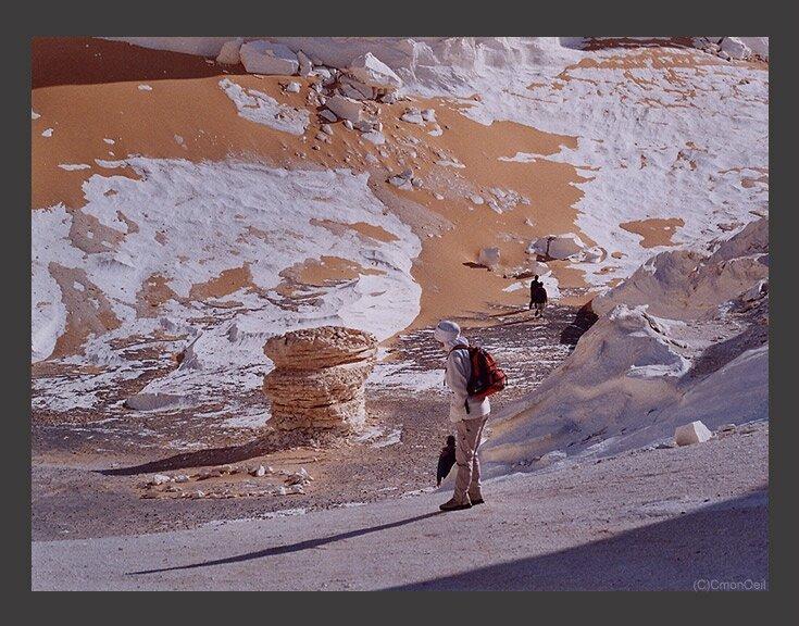 desertblanc14