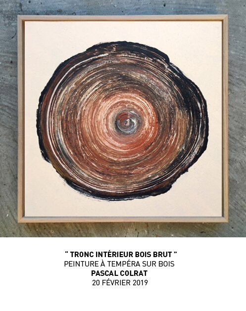 ___tronc_inte_rieur_bois_brut__