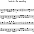 Haste_to_the_wedding_2
