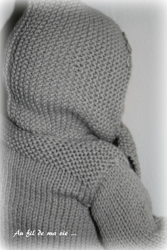 Gilet Phildar Partner 6 Bonnet écharpe (1)