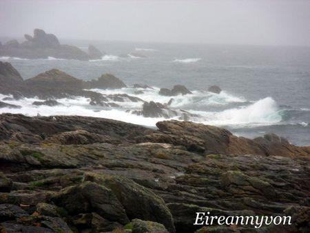 Juin 2011_La mer