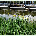 Lac Azur 25041518