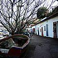 Biarritz, port des Pêcheurs, crampottes (64)