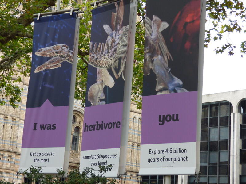 25 Londres Natural History Museum (1)