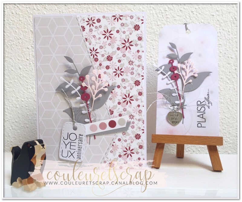 Couleuretscrap_S3_lift_carte_anniversaire_ensemble