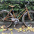 Vélo automne_7153