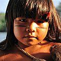 Au cœur de l'amazonie, dans le département français d'outre-mer de guyane, un drame sanitaire et écologique se joue
