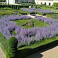 Inspiration for gardeners, emily darcy