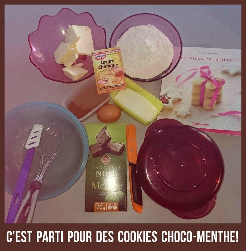 mamanprout_cookiestupperware (1)