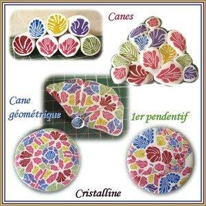 cristalline_gerbe_coloree