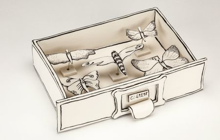 Butterfly drawer 1 Katharine Morling
