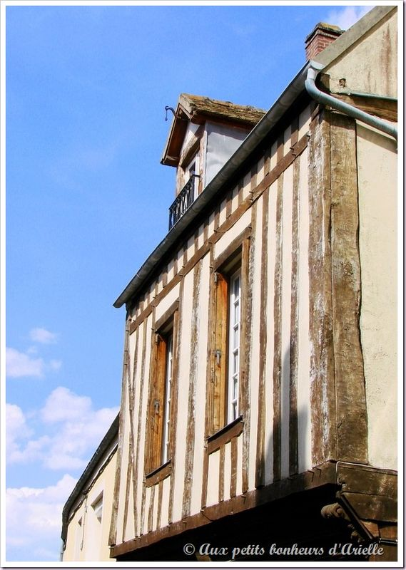 Montfort l'Amaury (12)