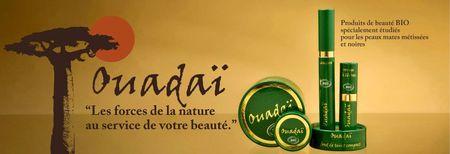 ouadai-cosmetics-intro-banner