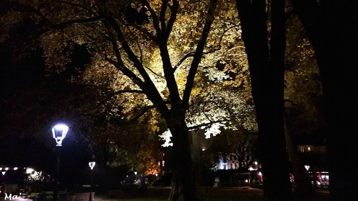 171104_Aix_les_Bains_by_night