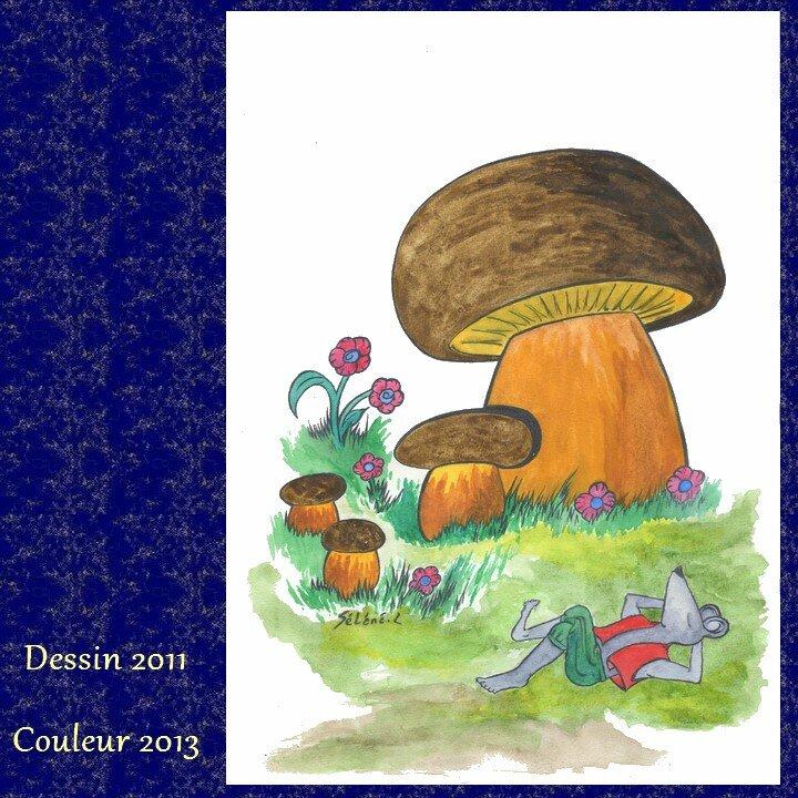 colo-champignon