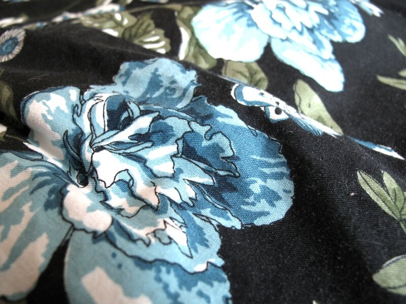 Chardon_fleurs bleues04