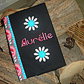 CS Aurélie (1)
