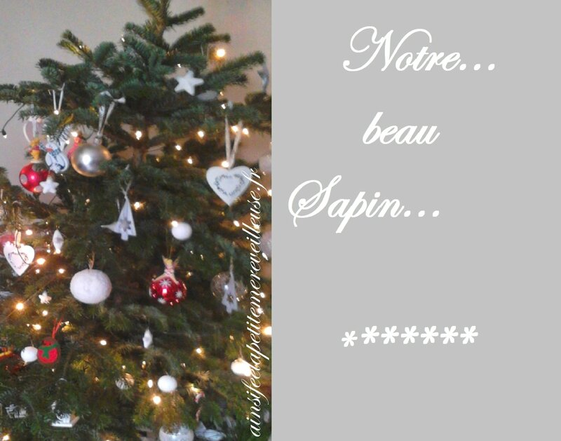 27 dec 2014 sapin