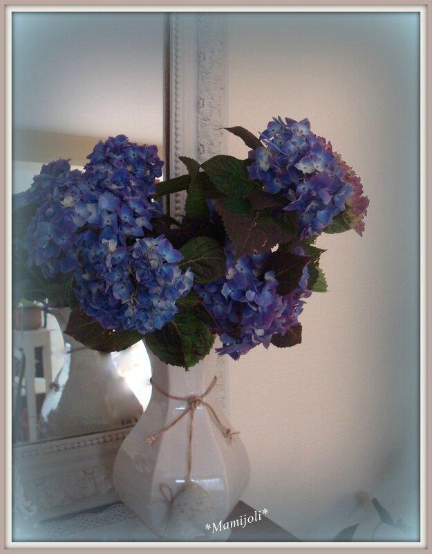 Hortensias 01/06/2014