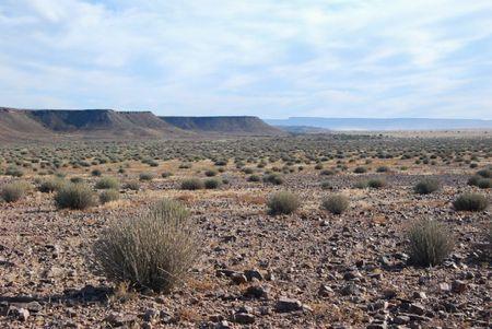 Namibie (479)