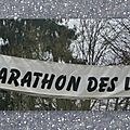 Semi marathon de bullion