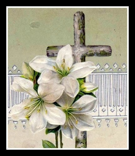 lys et croix