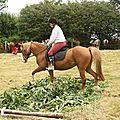 équitation de pleine nature - rallye équestre (183)