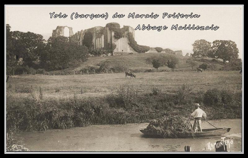Yole (barque) du Marais Poitevin abbaye de maillezais