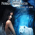 Clunet,eloise - le cycle des pierres protectrices - 1 pierre de lune