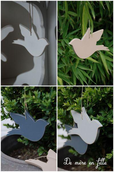 oiseaux ailes