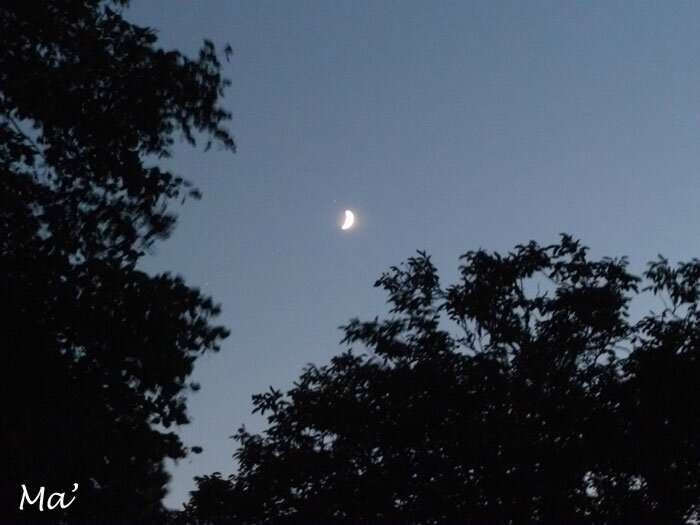 140831_lune