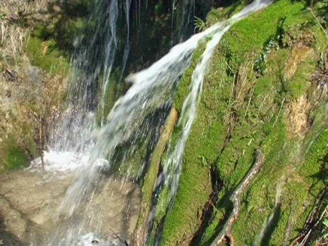 cascade moussue