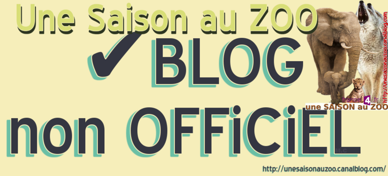 BLOG non OFFiCiEL